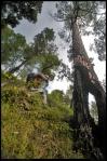 vinaymenonphotography_mountainbiking-146