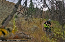 vinaymenonphotography_mountainbiking-195