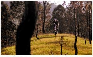 Wheels2Pindari_2012 (4)